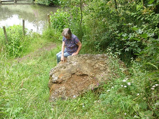 NeedhamErratic2